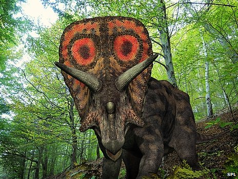 Computer artwork of a Torosaurus wandering in a forest about 65 to 100 million years ago, in what is now south-east Wyoming in the United States