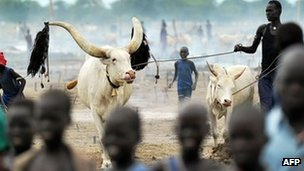 South Sudan to disarm cattle men