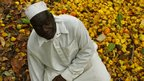 Ivorian farmer crouches in front of his crop of cashew nuts
