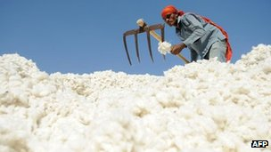 A worker sorts cotton in Gujarat in December 2011