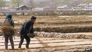 Handout photo taken on 20 April, 2005 by the World Food Programme shows North Korean co-operative farm workers near Sariwon, North Hwanghae province
