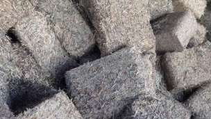 Fresh briquettes made from Hungarian banknotes