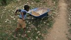 Haitian boy pushing a wheelbarrow.