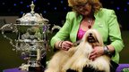 Lhasa Apso Elizabeth and her owner from Coventry, Warwickshire, celebrate their win.
