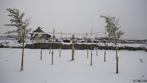 Yuriage