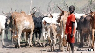 cattle herder in Jonglei (file photo)
