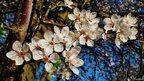Cherry blossom (c) Mike Vallender