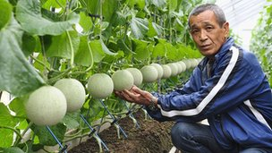 Farmer Masaomi Suzuki and melons (Pic: Alfie Goodrich)