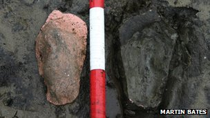 Ancient footprints found in peat at Borth beach