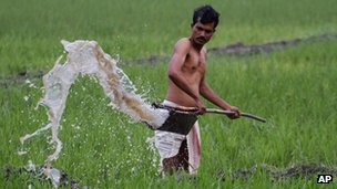 An Indian farmer waters his field in Pobitora village, near Gauhati in Assam state - 29 February 2012