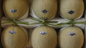 Melons on display