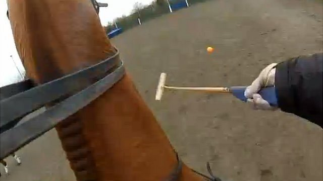 View of polo ball from horse