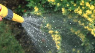 Watering garden with water from hosepipe