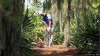 Retief Goosen of South Africa plays golf shot