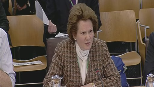 Cllr Carolyn Riddell-Carre from Scottish Borders Council gives evidence to the Economy, Energy and Tourism Committee