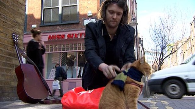 James Bowen and Bob the cat