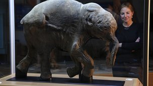 Lyuba the baby mammoth on display at the Shemanovskiy Museum and Exhibition Center, Salekhard, Russia