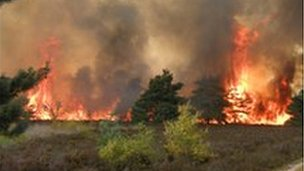 Fire at Frensham Common