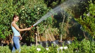 Woman watering plants - pic posed by model