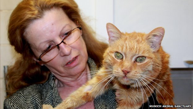 Poldi the cat that's been missing for 15 years