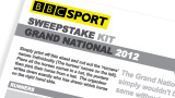 Grand National sweepstake kit