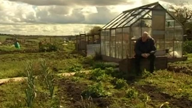 Arthur Martin on his allotment