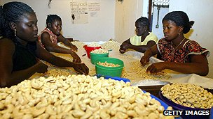 Workers processing cashew nuts
