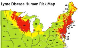 Map of Lyme disease human risk