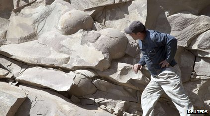 A man looking at dinosaur eggs