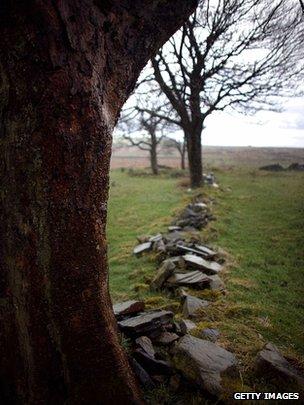 Thornton Moor