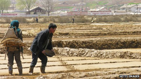 North Korean farm