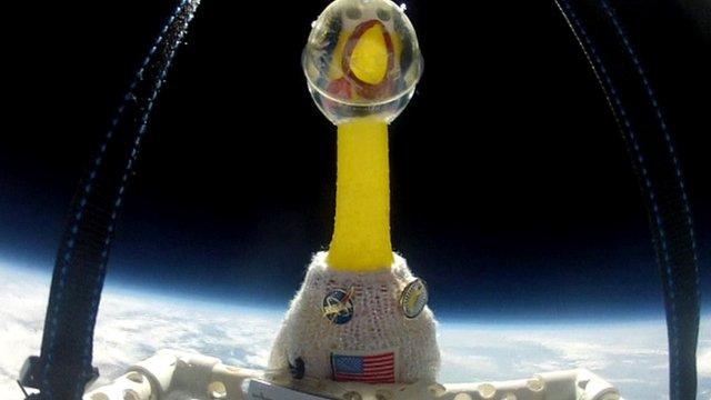NASA Sends Rubber Chicken Into Space _59778033_jex_1384816_de26-1