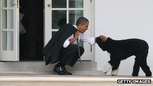 President Obama and his dog Bo