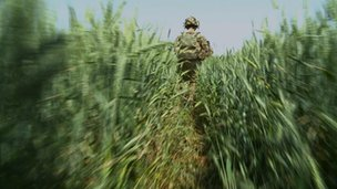 Nato soldier on patrol in Helmand province