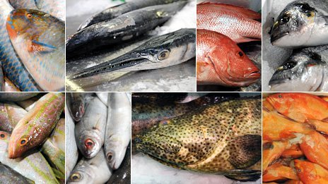 Varieties of fish