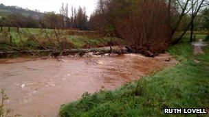 River Lowman at Tiverton