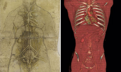Da Vinci sketch of a torso and a CT image of one