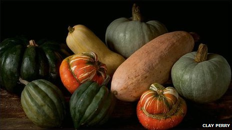 Ornamental squash (l-r) Muscade de Provence, table queen, Turk's turban, spaghetti, blue ballet, and pink banana