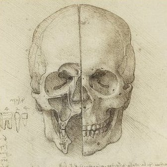 The skull sectioned 1489, courtesy Royal Collection