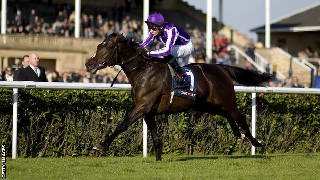 2000 Guineas Winner