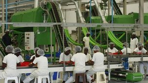 Factory workers in Ivory Coast process cashew nuts.