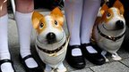 School children wait with inflatable corgi dogs prior the arrival of Queen Elizabeth II in Exeter