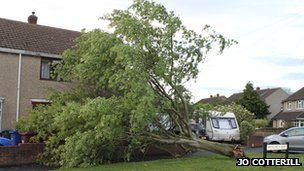 Tree damage in Kidlington