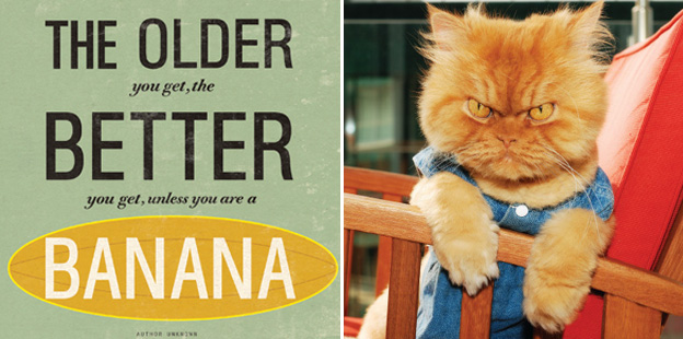 "Urban graphic cards. Card on left reads: ""The older you get, the better you get, unless you're a banana."" Card on right shows picture of a cat"