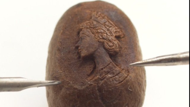 Queen&#039;s portrait on a coffee bean