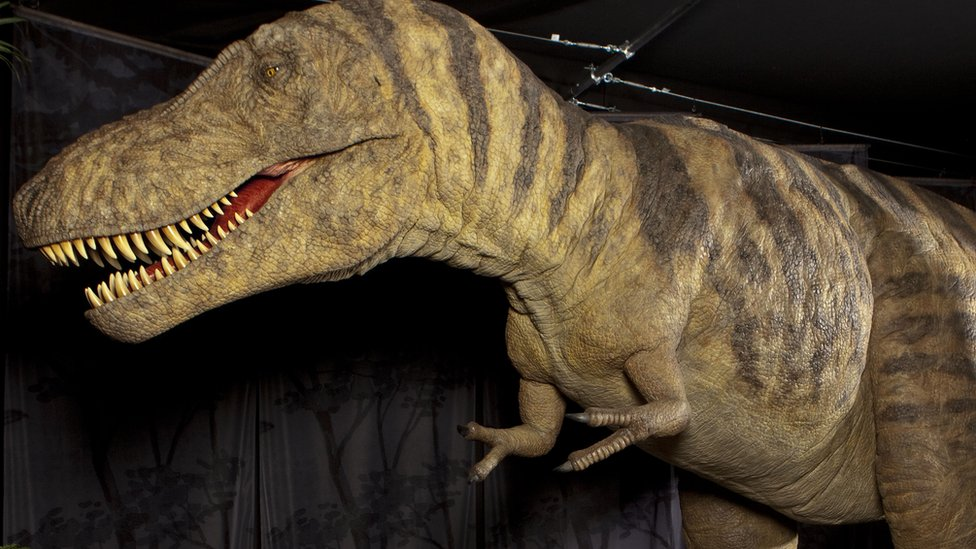 BBC News - In pictures: Dinosaurs invade Ulster Museum