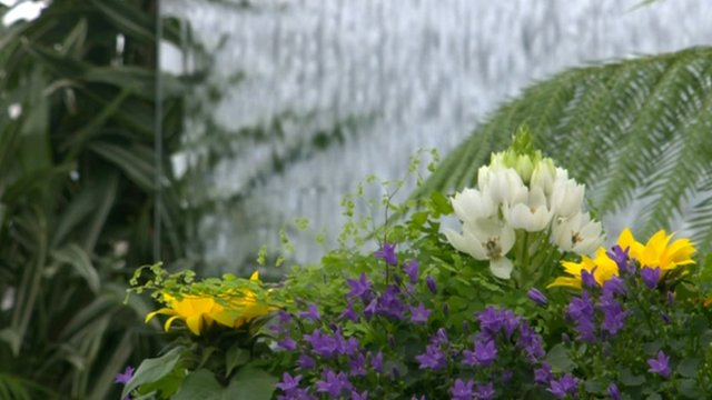 Garden at the 2012 Chelsea Flower Show