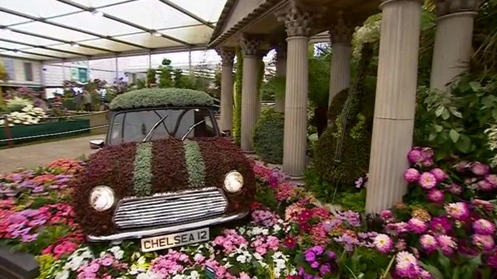 chelsea flower show tv