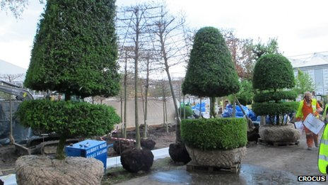 Topiary sentinels - Chelsea 2012