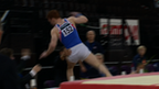 GB gymnast Daniel Purvis ends up in judges' lap